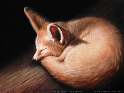 Kit Fox, v.2